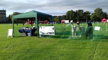 Our stall at events